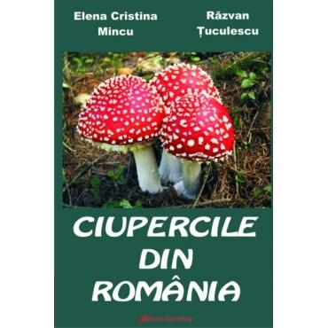 Ciupercile din România